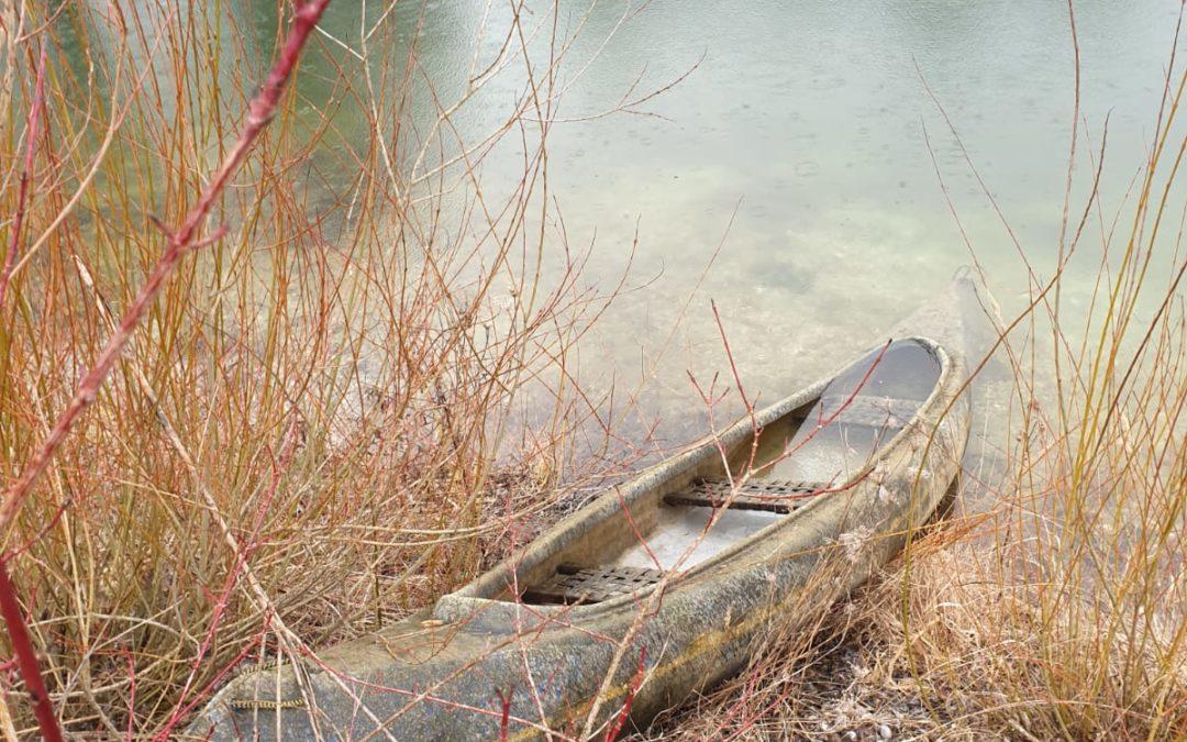 Spezialauftrag im Fischweiher