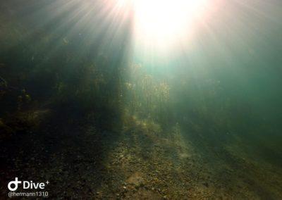 Lichteinfall unter Wasser