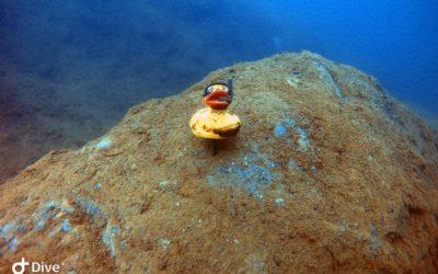Tieftauchgang im Murner See