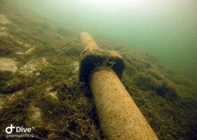 Rohr im Starnberger See